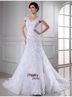 A-Line/Princess V-neck Chapel Train Organza Wedding Dress