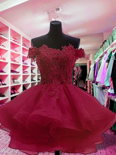 Ball Gown Off-the-Shoulder Short Organza Dress