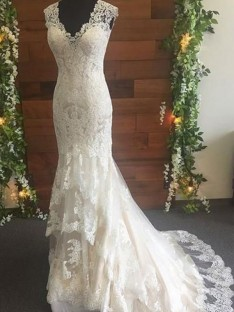 Mermaid Tulle Lace V-neck Long Wedding Dress