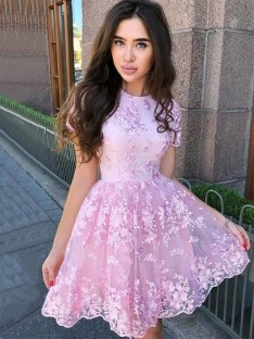 A-Line Organza Sheer Neck Short Dress