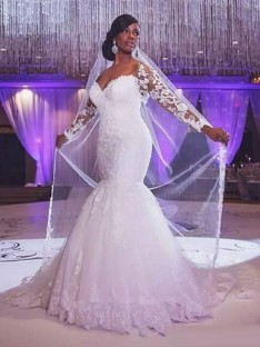 Trumpet/Mermaid Long Sleeves Sweetheart Sweep/Brush Train Tulle Wedding Dress